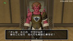 Dragon Quest X - 14